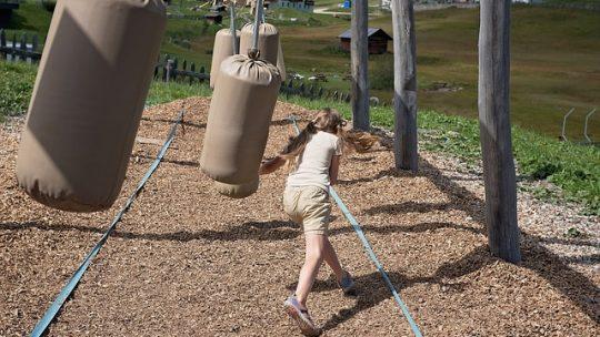 Les avantages de la classe nature pour les enfants et l'environnement